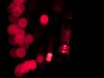 LED Нет-лайт Светодиодная сеть без контроллера, 2х3 м, красный